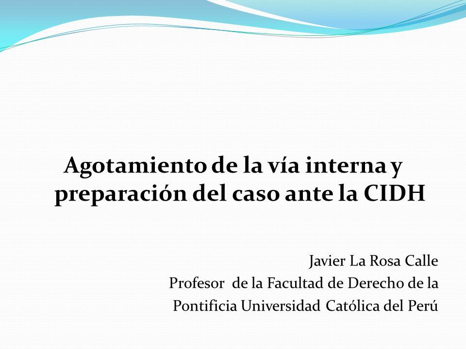 Agotamiento de la vía interna y preparación del caso ante la CIDH