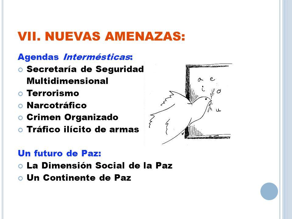 VII. NUEVAS AMENAZAS: Agendas Intermésticas: Secretaría de Seguridad