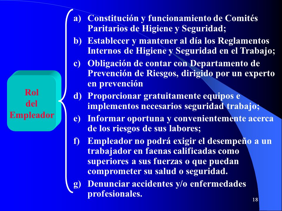 Constitución y funcionamiento de Comités Paritarios de Higiene y Seguridad;