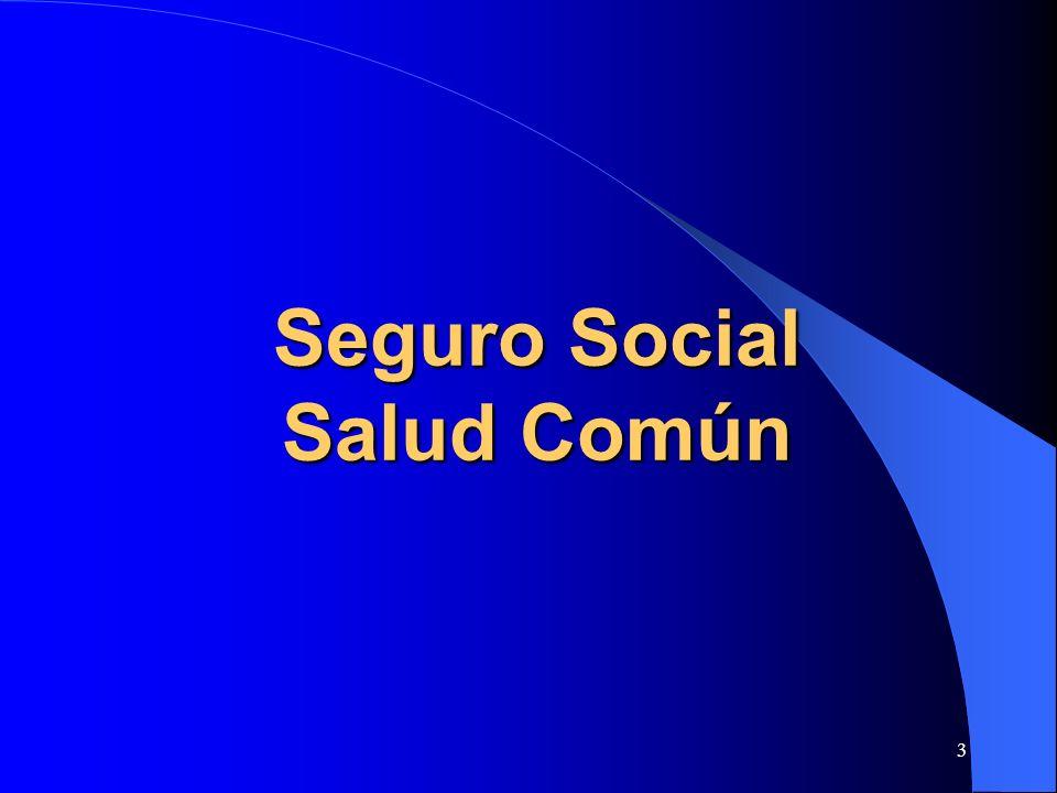 Seguro Social Salud Común