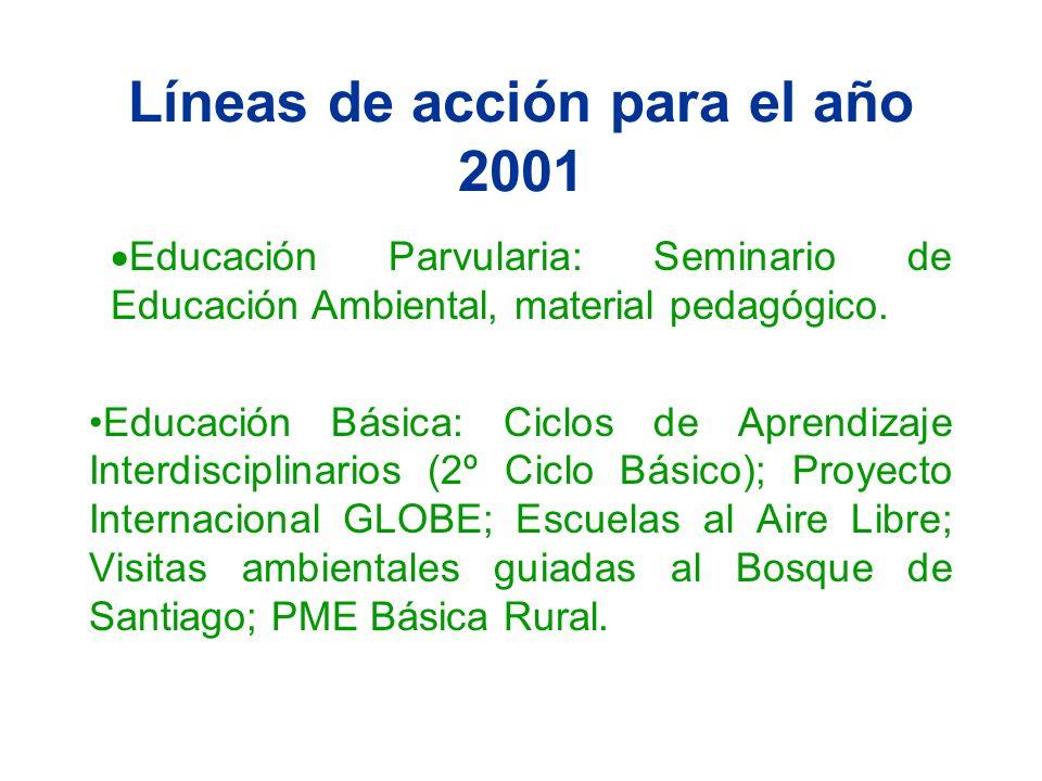 Líneas de acción para el año 2001