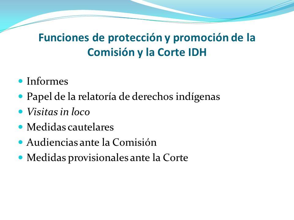 Funciones de protección y promoción de la Comisión y la Corte IDH
