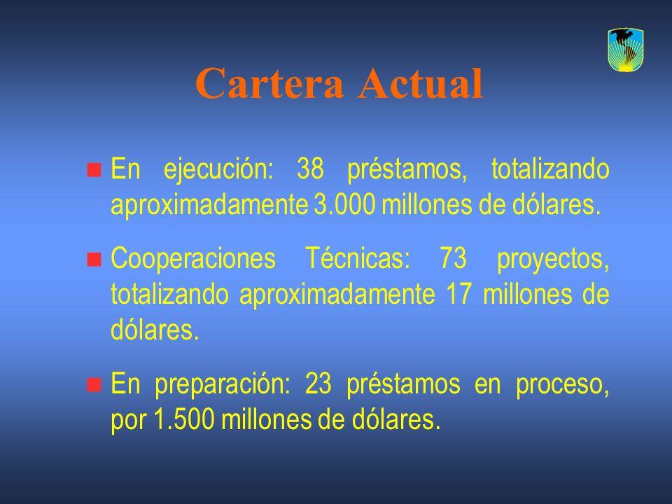 Cartera Actual En ejecución: 38 préstamos, totalizando aproximadamente 3.000 millones de dólares.
