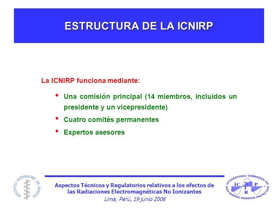 ESTRUCTURA DE LA ICNIRP