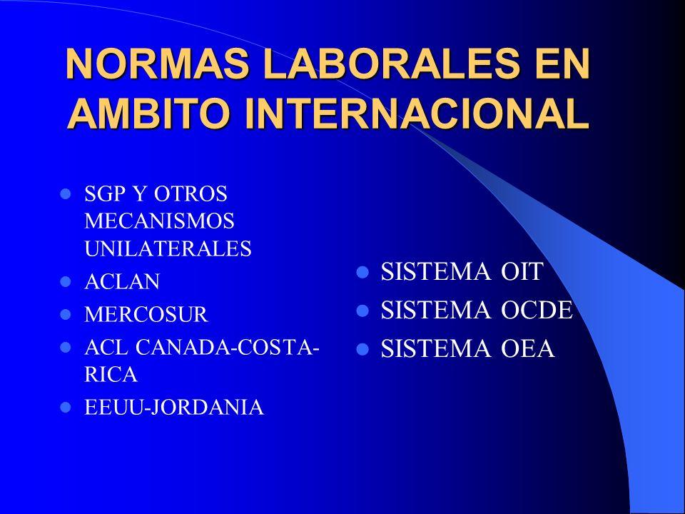NORMAS LABORALES EN AMBITO INTERNACIONAL