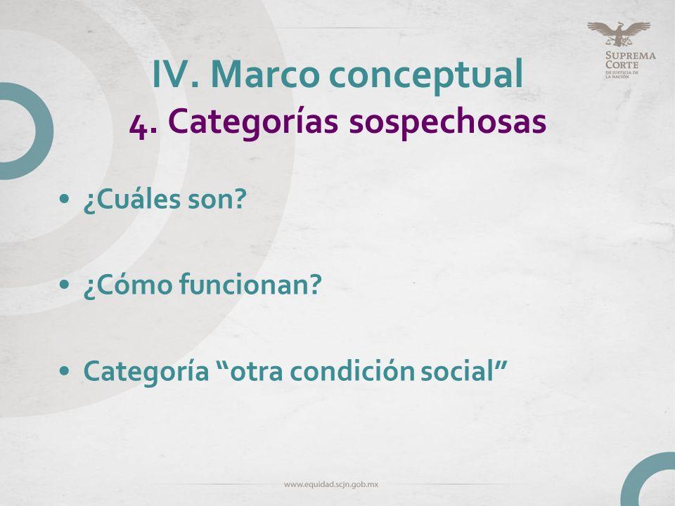 IV. Marco conceptual 4. Categorías sospechosas