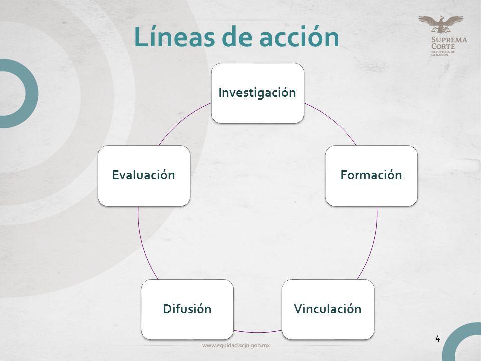 Líneas de acción Investigación Formación Vinculación Difusión