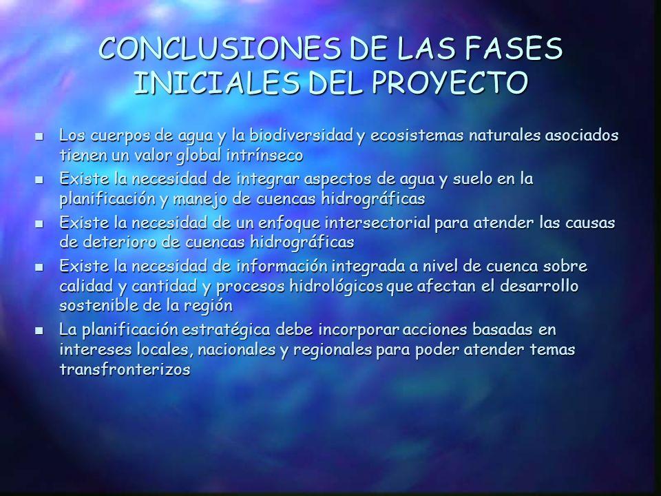 CONCLUSIONES DE LAS FASES INICIALES DEL PROYECTO