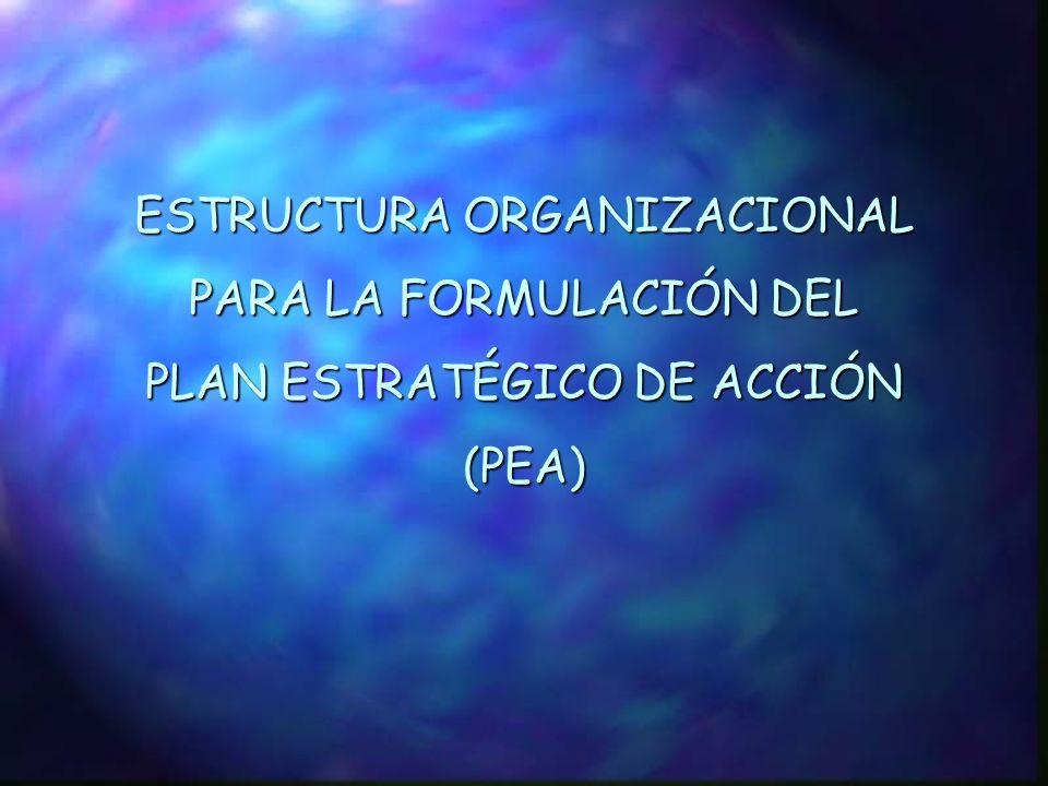 ESTRUCTURA ORGANIZACIONAL PARA LA FORMULACIÓN DEL PLAN ESTRATÉGICO DE ACCIÓN (PEA)