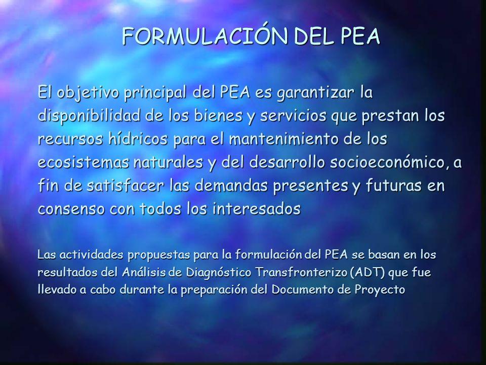 FORMULACIÓN DEL PEA