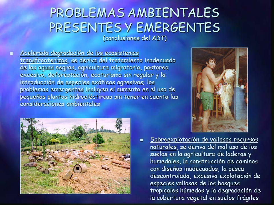 PROBLEMAS AMBIENTALES PRESENTES Y EMERGENTES (conclusiones del ADT)
