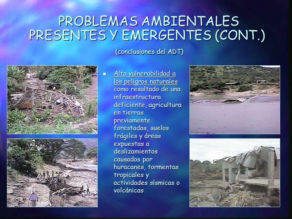 PROBLEMAS AMBIENTALES PRESENTES Y EMERGENTES (CONT