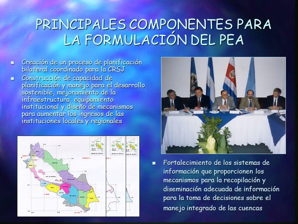 PRINCIPALES COMPONENTES PARA LA FORMULACIÓN DEL PEA