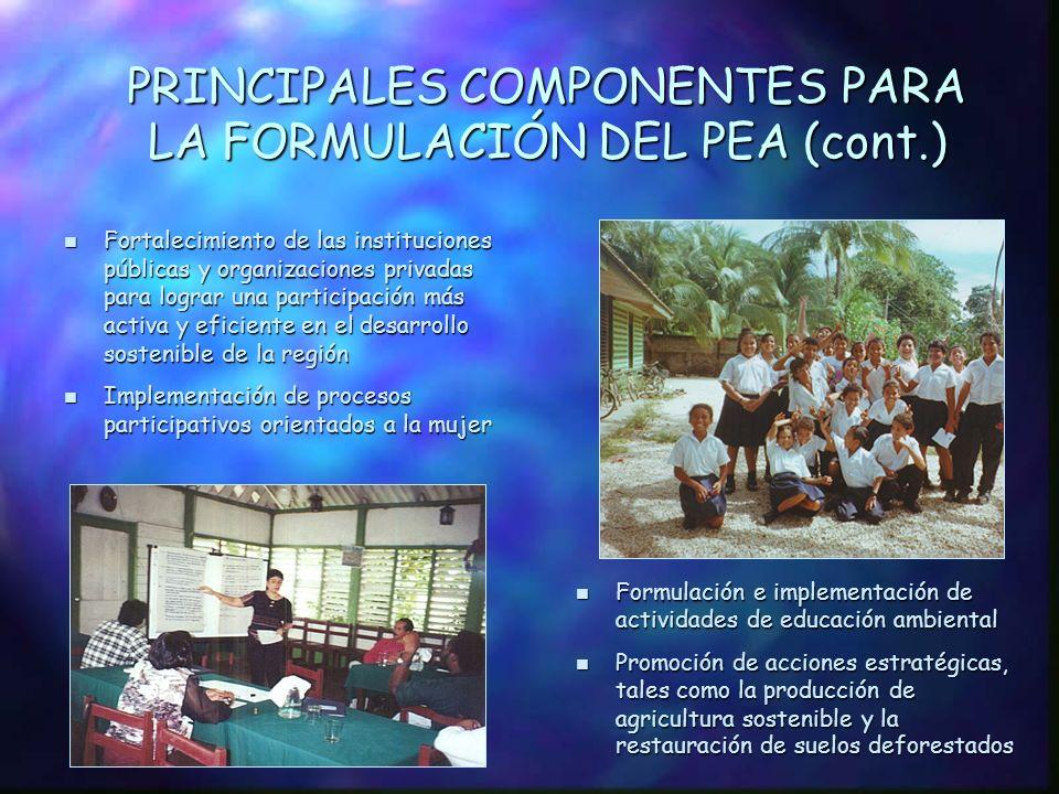 PRINCIPALES COMPONENTES PARA LA FORMULACIÓN DEL PEA (cont.)