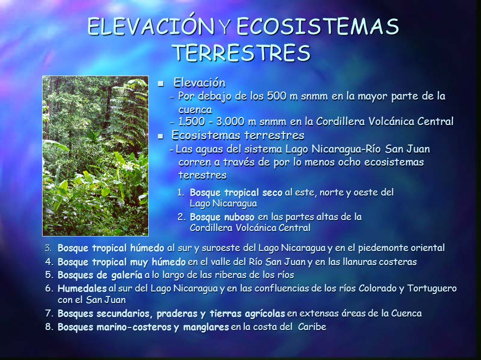 ELEVACIÓN Y ECOSISTEMAS TERRESTRES