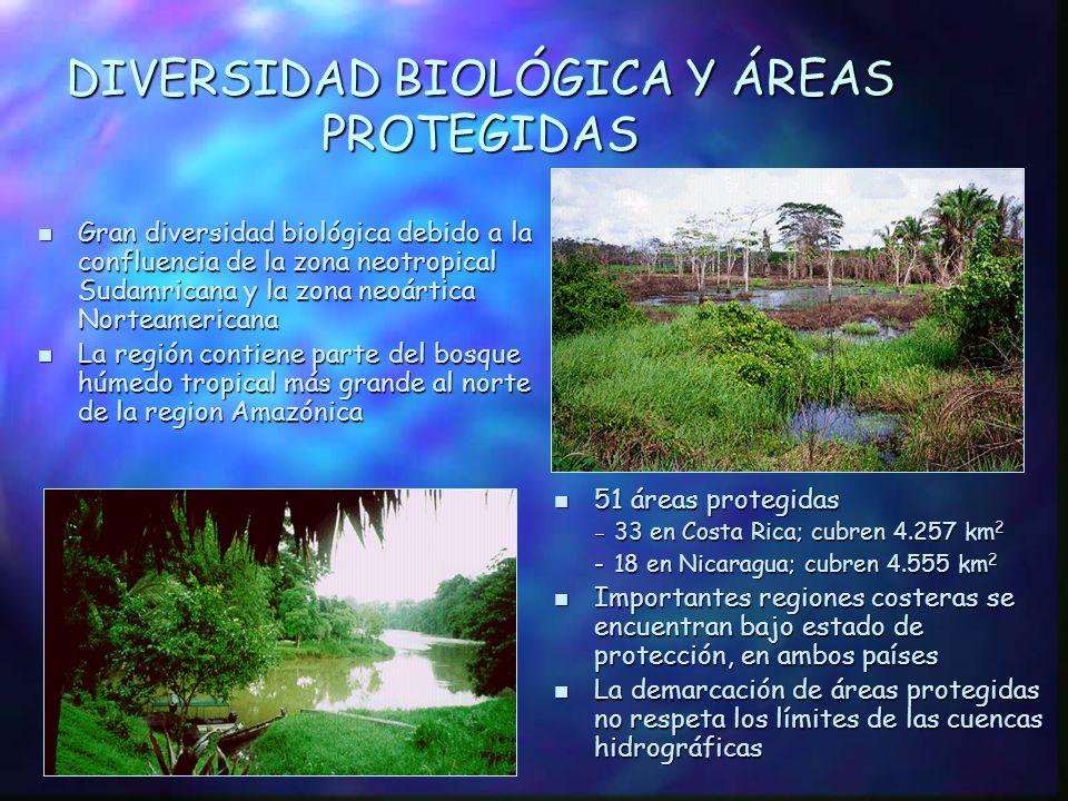 DIVERSIDAD BIOLÓGICA Y ÁREAS PROTEGIDAS