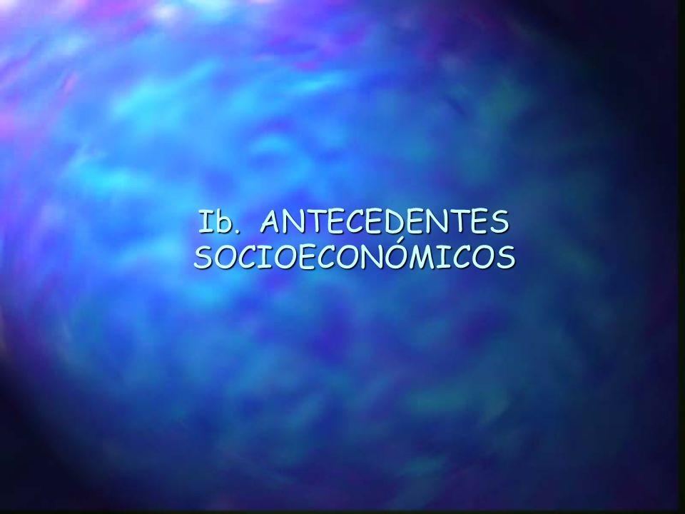 Ib. ANTECEDENTES SOCIOECONÓMICOS