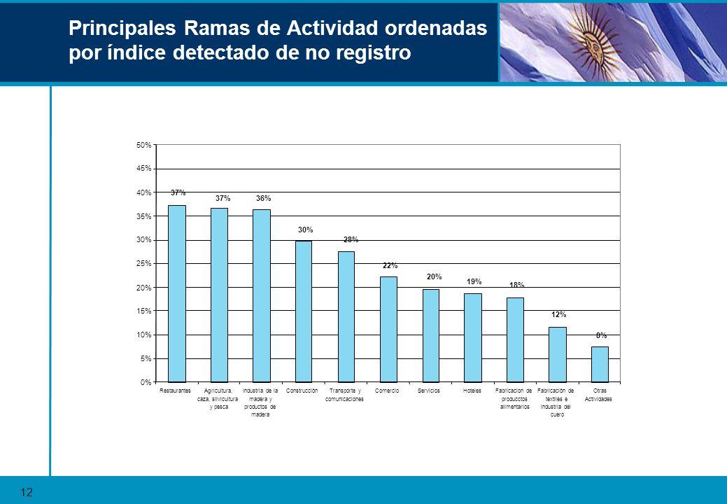 Principales Ramas de Actividad ordenadas por índice detectado de no registro