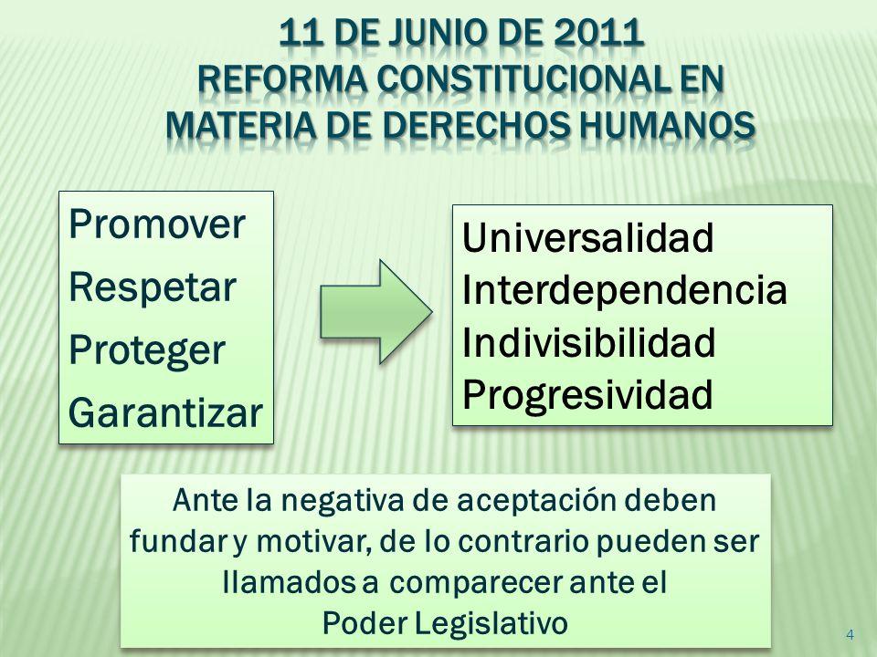 Promover Universalidad Respetar Interdependencia Proteger