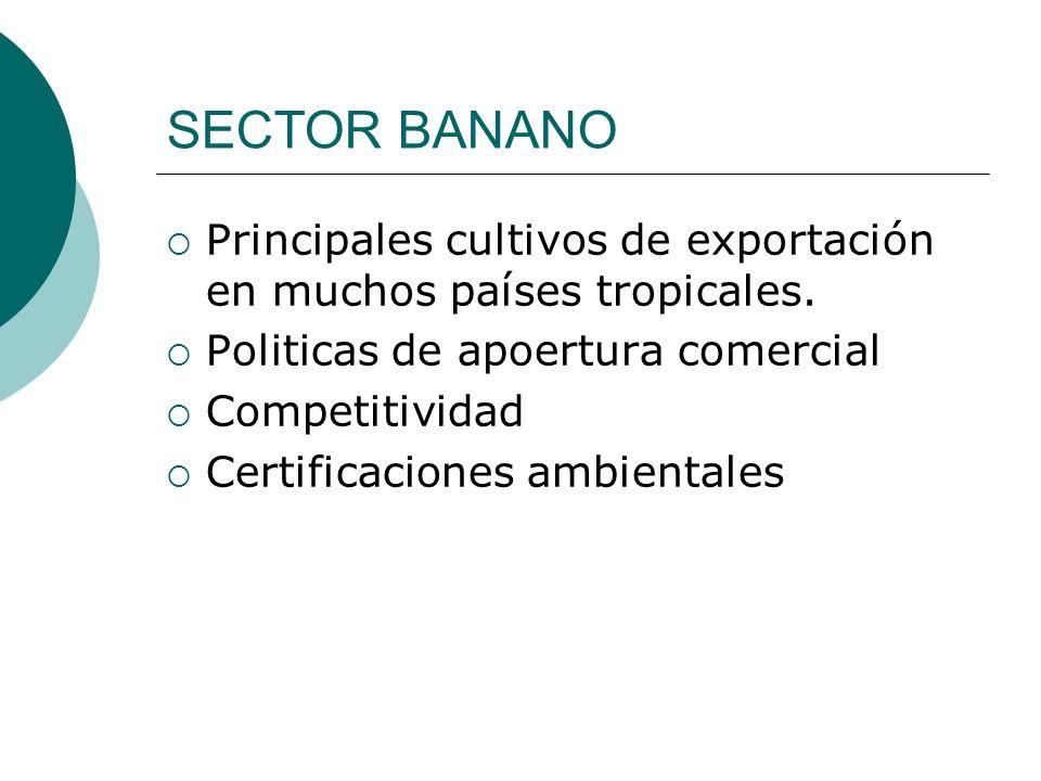 SECTOR BANANO Principales cultivos de exportación en muchos países tropicales. Politicas de apoertura comercial.