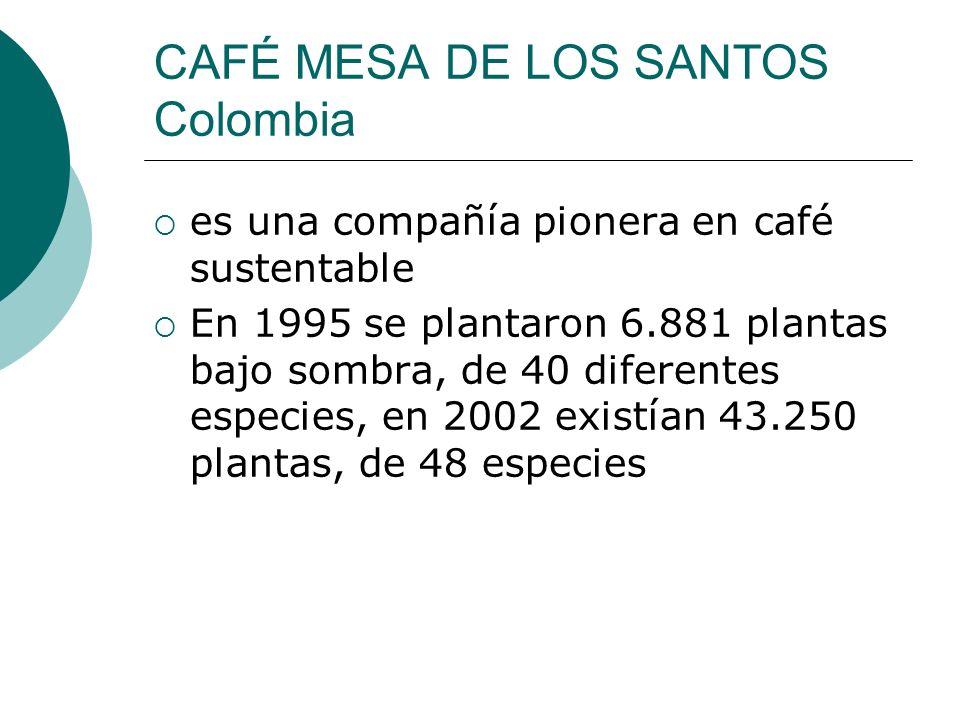 CAFÉ MESA DE LOS SANTOS Colombia