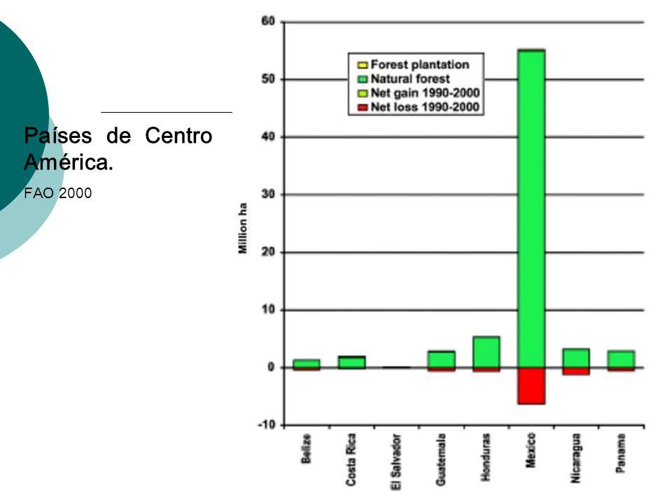 Países de Centro América.