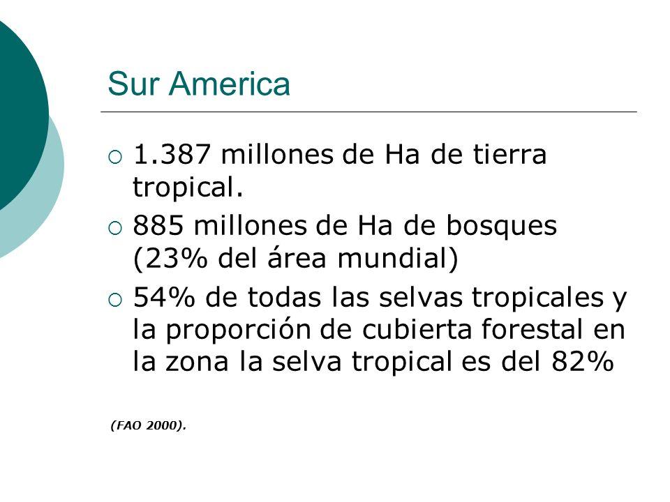 Sur America 1.387 millones de Ha de tierra tropical.