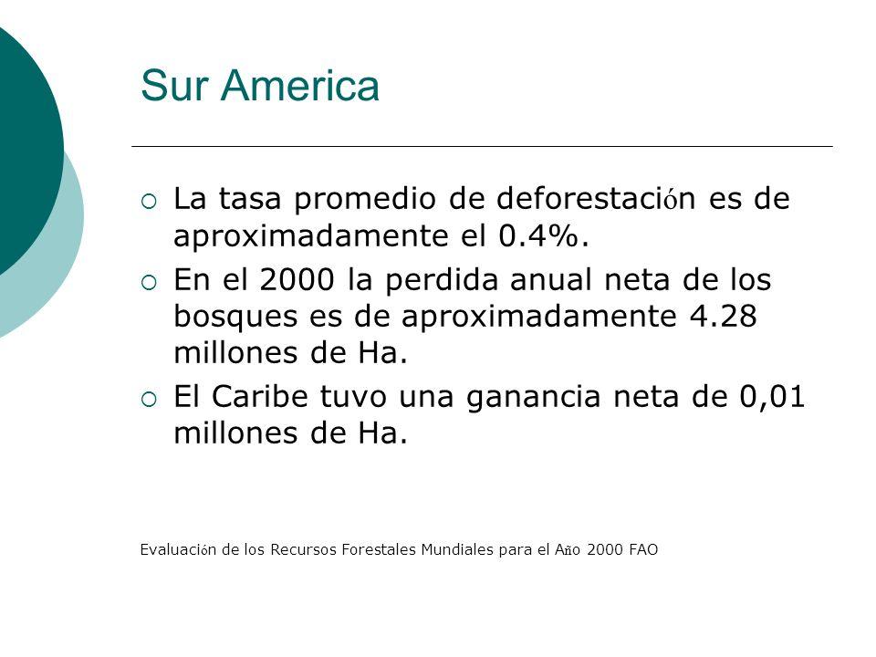 Sur America La tasa promedio de deforestación es de aproximadamente el 0.4%.