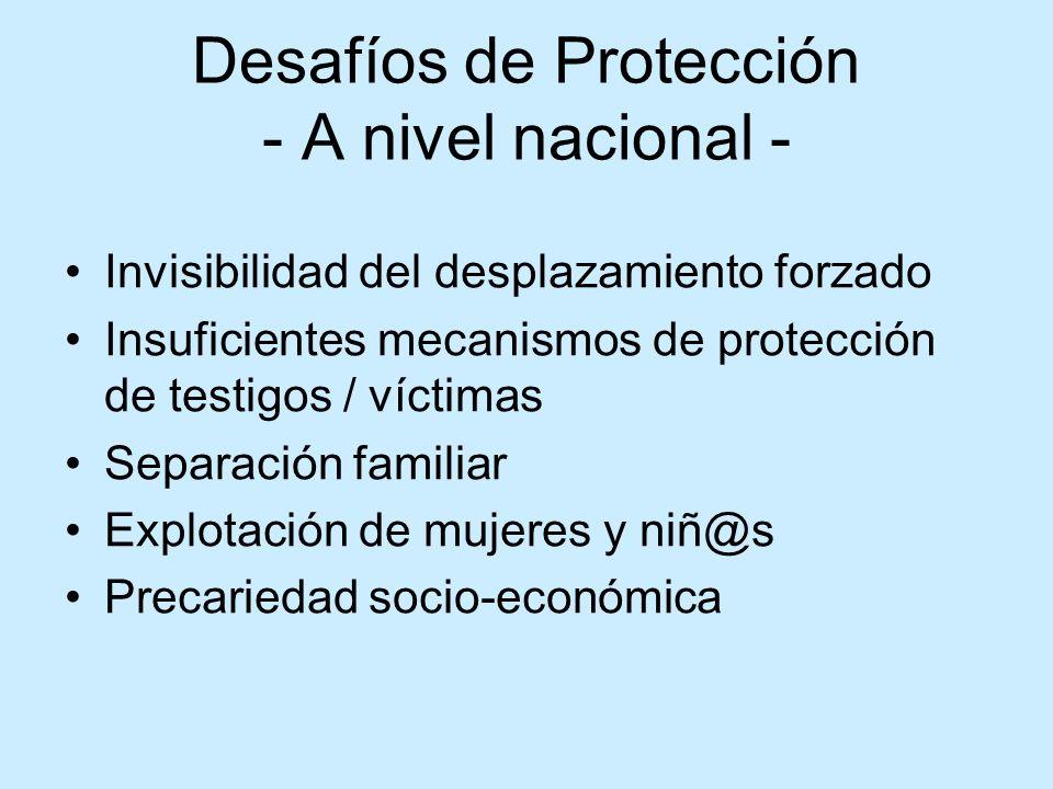 Desafíos de Protección - A nivel nacional -