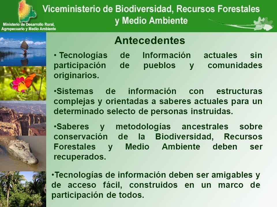 Antecedentes Tecnologías de Información actuales sin participación de pueblos y comunidades originarios.