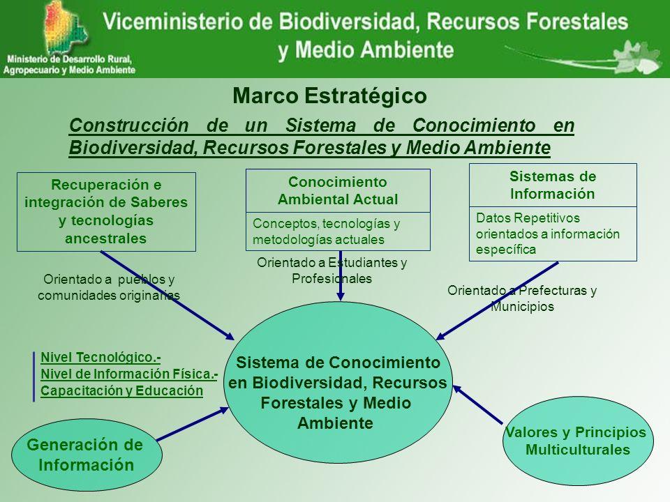 Marco Estratégico Construcción de un Sistema de Conocimiento en Biodiversidad, Recursos Forestales y Medio Ambiente.