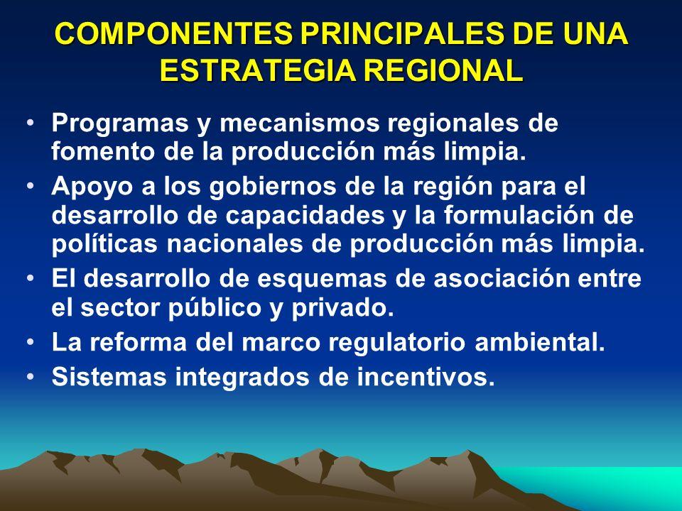 COMPONENTES PRINCIPALES DE UNA ESTRATEGIA REGIONAL