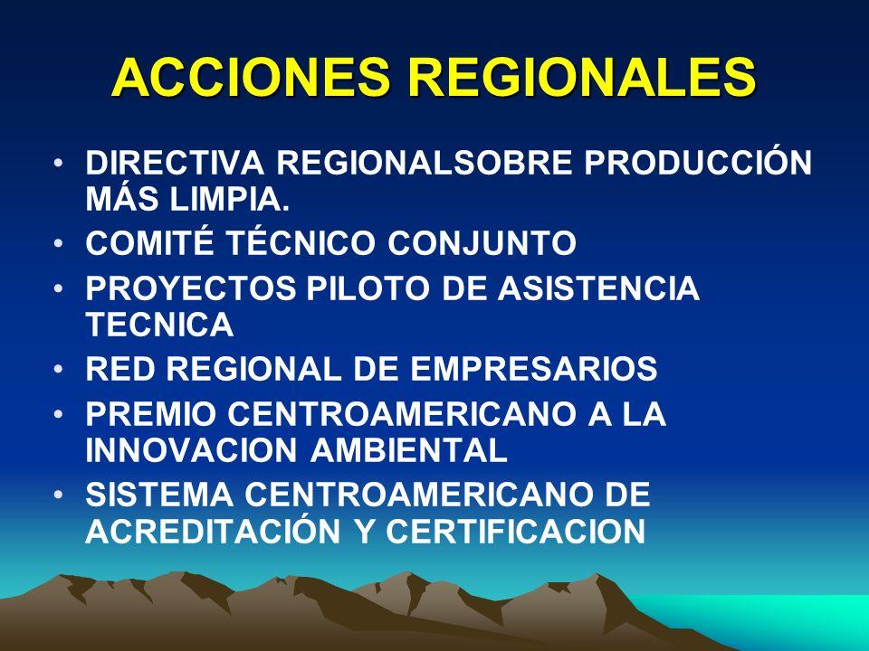 ACCIONES REGIONALES DIRECTIVA REGIONALSOBRE PRODUCCIÓN MÁS LIMPIA.