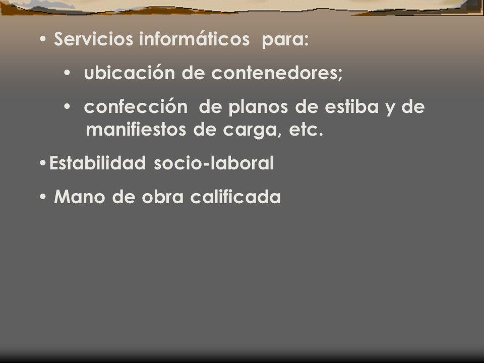 Servicios informáticos para: