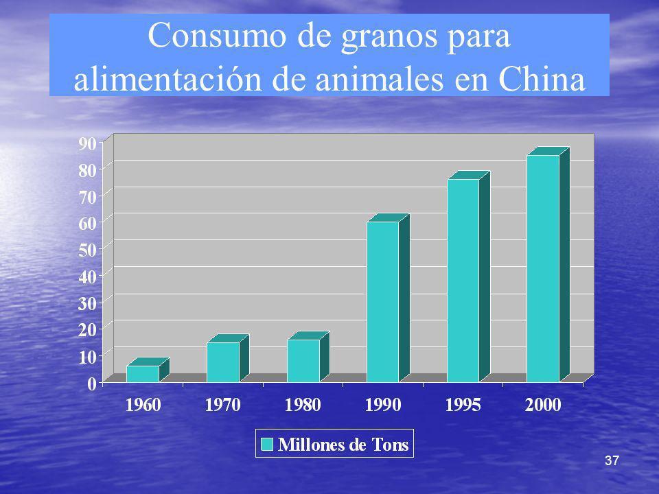 Consumo de granos para alimentación de animales en China
