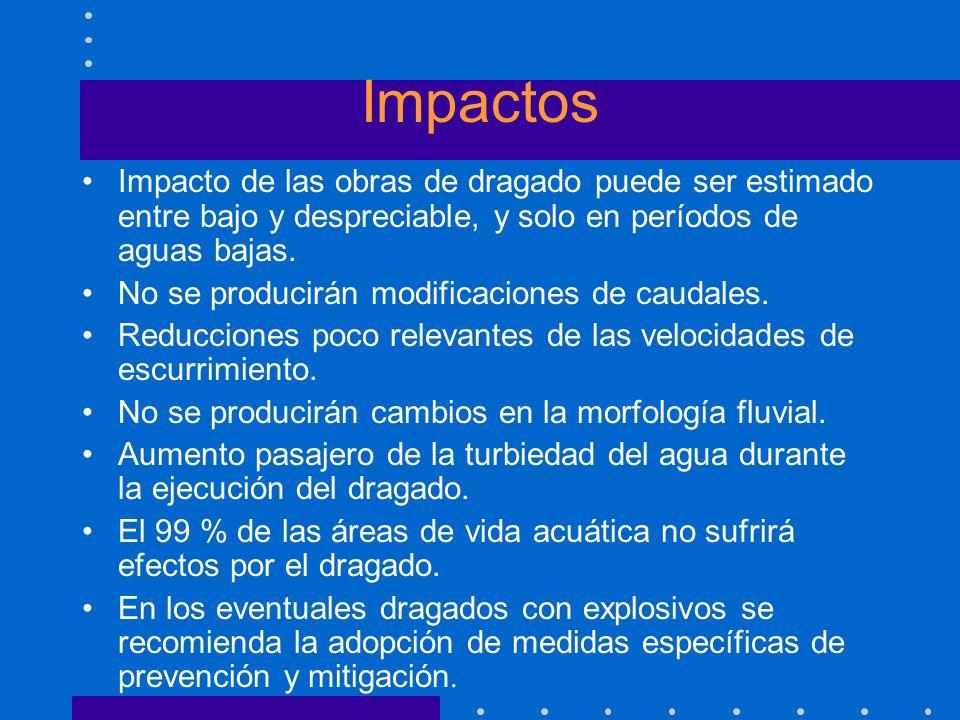 Impactos Impacto de las obras de dragado puede ser estimado entre bajo y despreciable, y solo en períodos de aguas bajas.