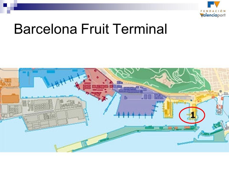 Barcelona Fruit Terminal