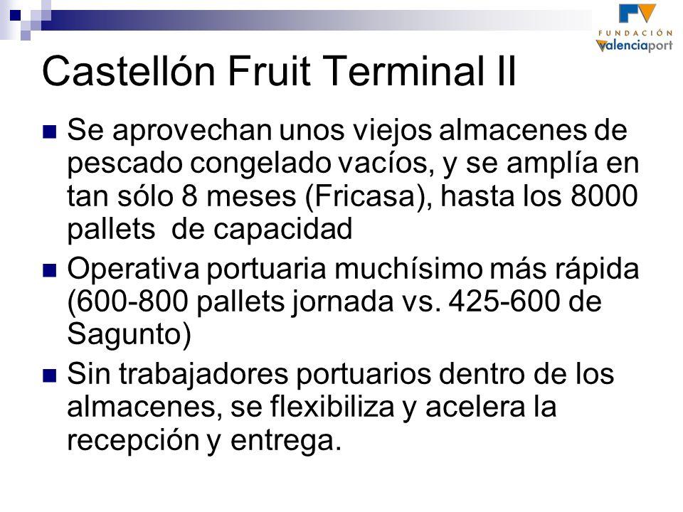 Castellón Fruit Terminal II