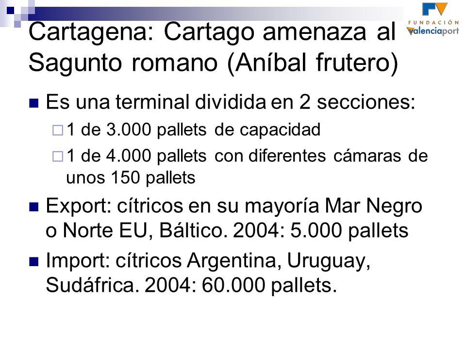 Cartagena: Cartago amenaza al Sagunto romano (Aníbal frutero)