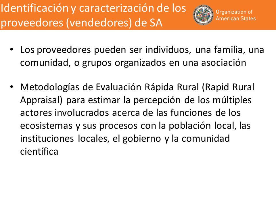Identificación y caracterización de los proveedores (vendedores) de SA