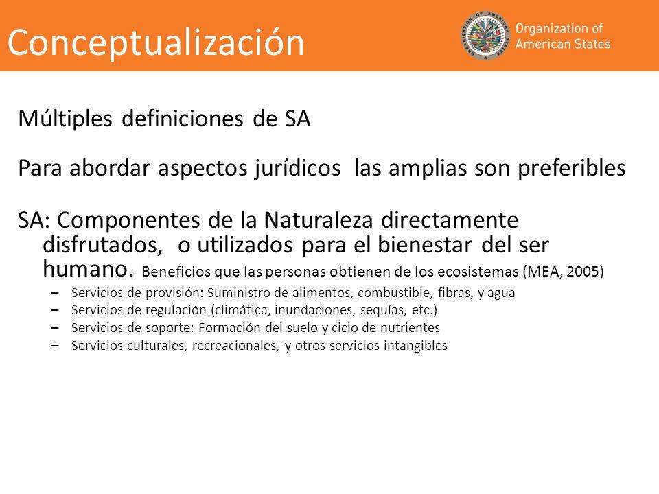 Conceptualización Múltiples definiciones de SA