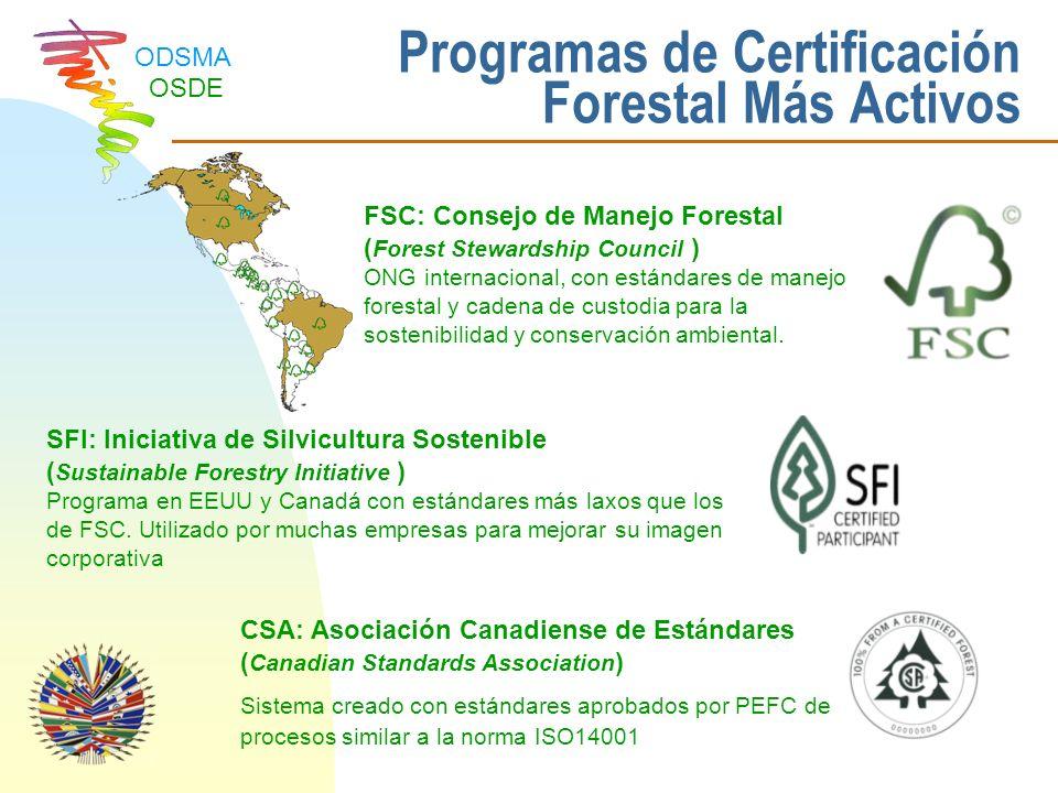 Programas de Certificación Forestal Más Activos
