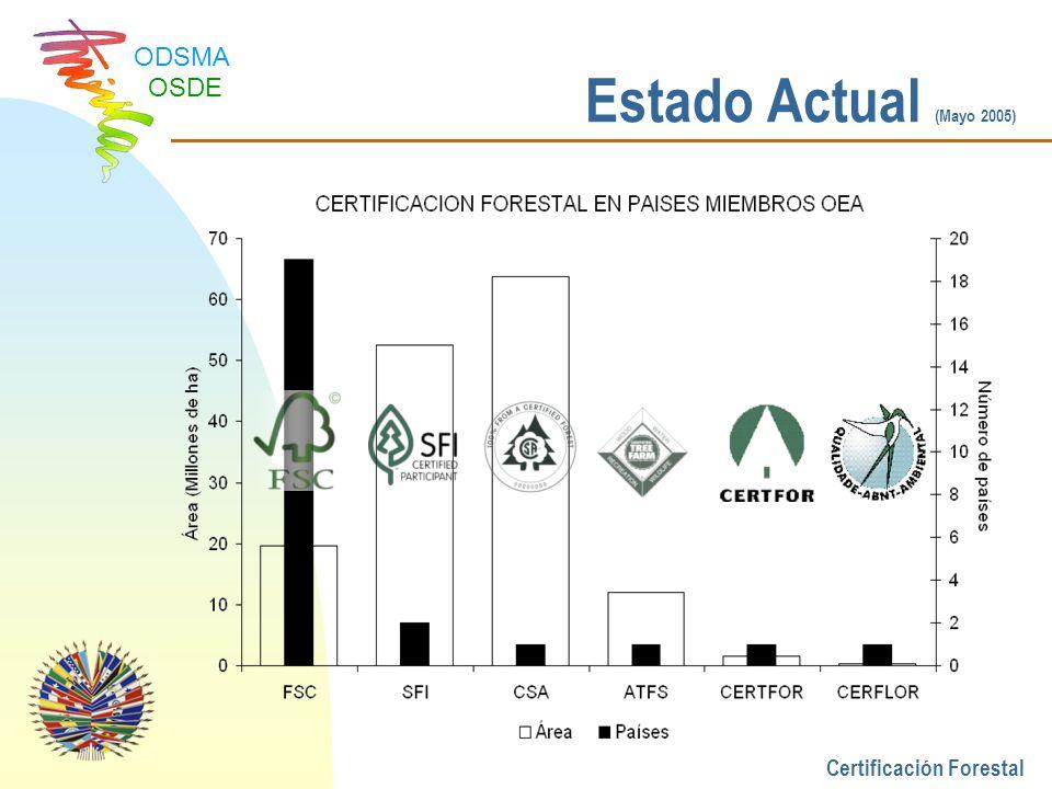 Estado Actual (Mayo 2005) Certificación Forestal