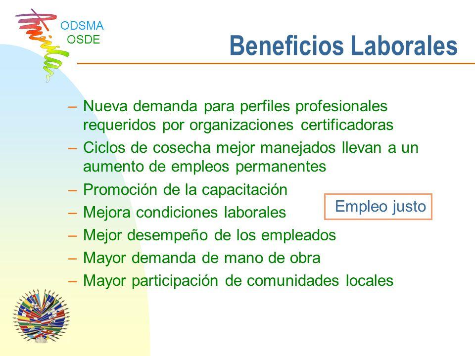 Beneficios Laborales Nueva demanda para perfiles profesionales requeridos por organizaciones certificadoras.