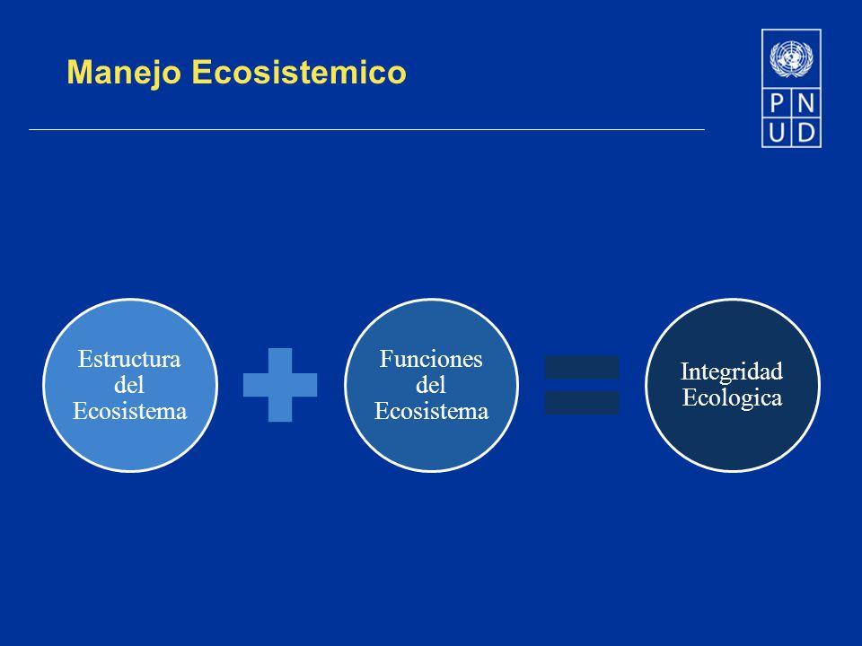 Manejo Ecosistemico Estructura del Ecosistema Funciones del Ecosistema
