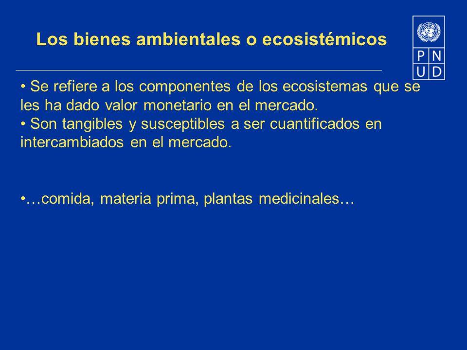 Los bienes ambientales o ecosistémicos