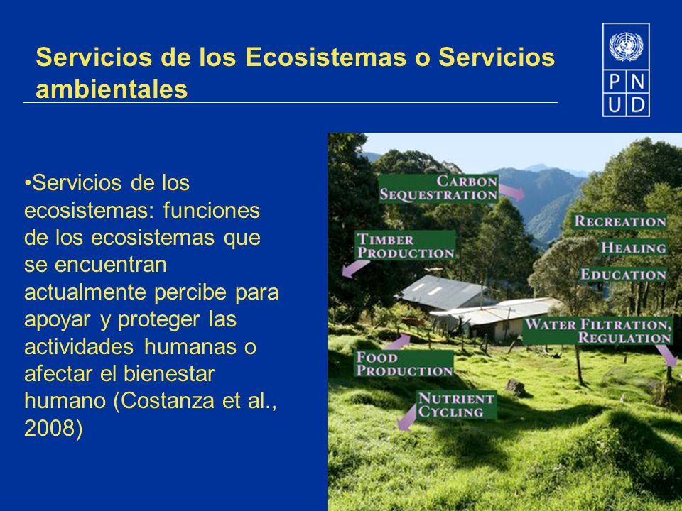 Servicios de los Ecosistemas o Servicios ambientales
