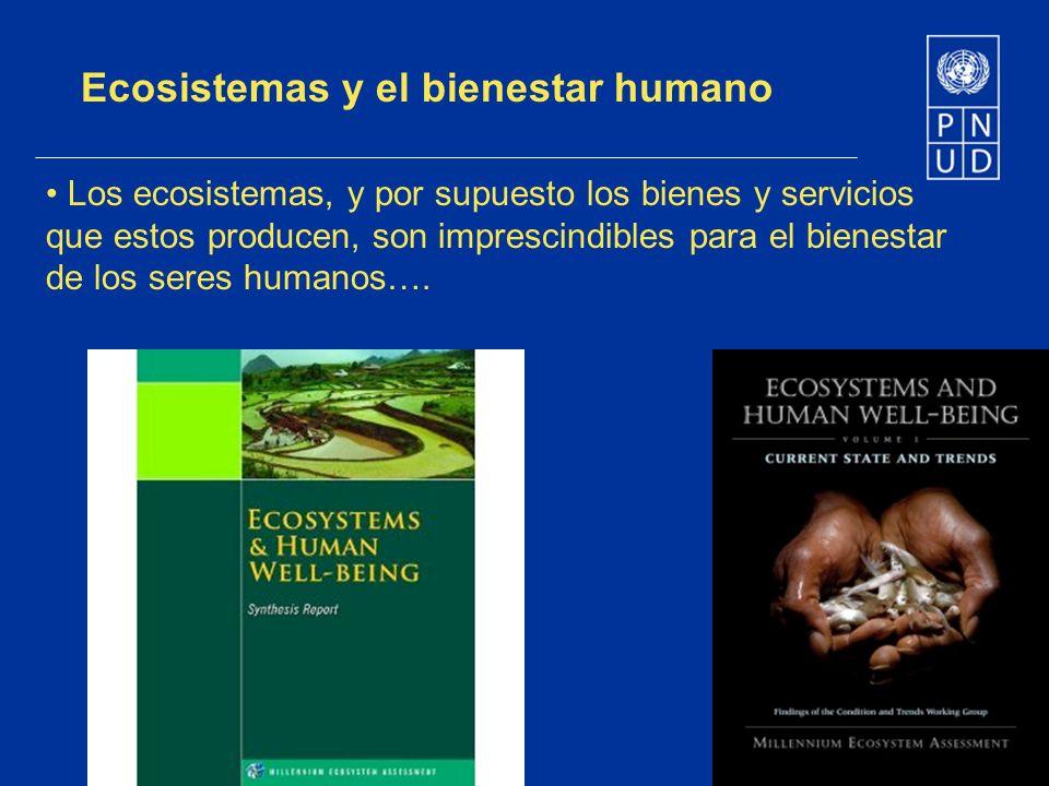 Ecosistemas y el bienestar humano