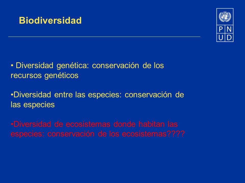 Biodiversidad Diversidad genética: conservación de los recursos genéticos. Diversidad entre las especies: conservación de las especies.