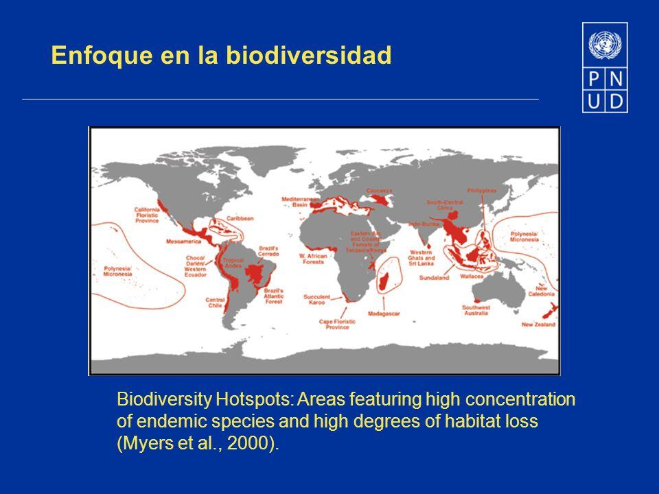 Enfoque en la biodiversidad